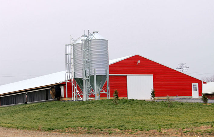 Poultry farming shed chicken house